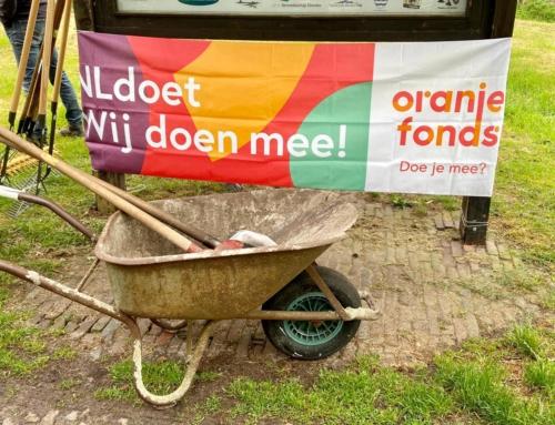 NL Doet